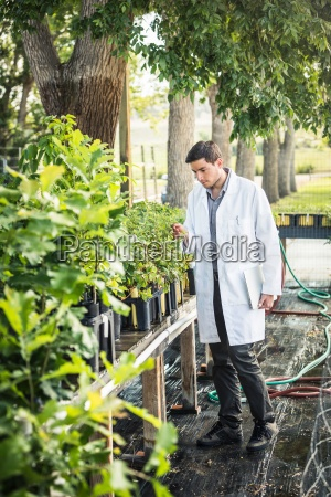 scientist carrying laptop examining plants at