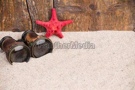 red starfish with binoculars