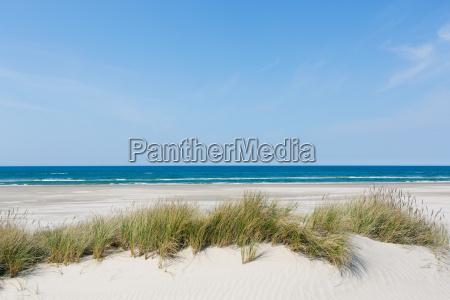 leerer sand strand am meer im