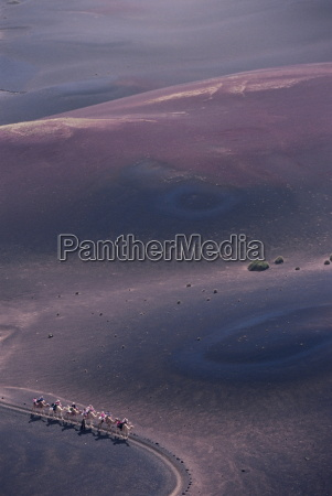 aerial view of people riding camels