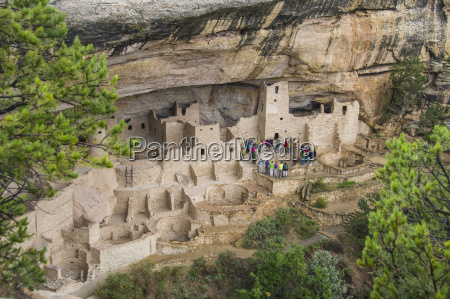 the cliff palace indian dwelling mesa