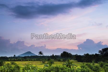 blau asien landwirtschaft ackerbau horizontal outdoor