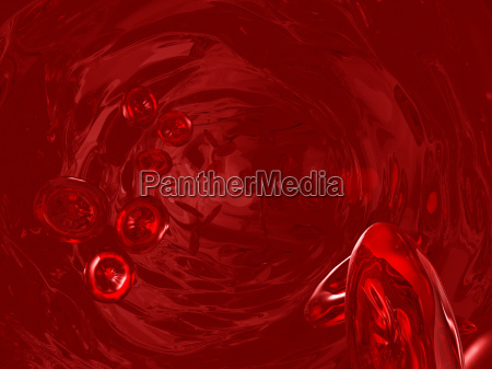 blood cells in the bloodstream
