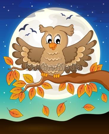 owl topic image 5