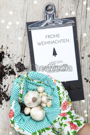 creative christmas card for a garden