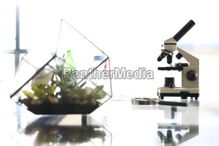 biotechnology lab microscope