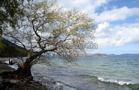 dilek peninsula national park kusadasi