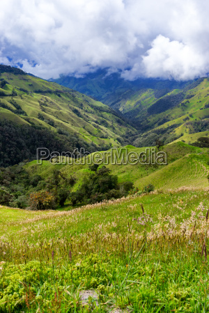 landscape near salento colombia