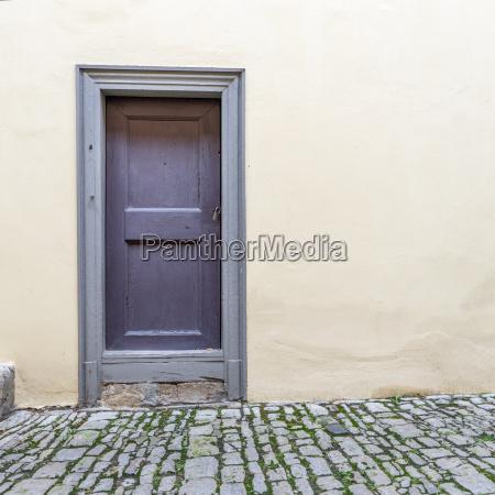 violet wooden door of the goethe