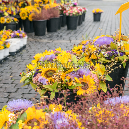 market stand with autumnal bouquets