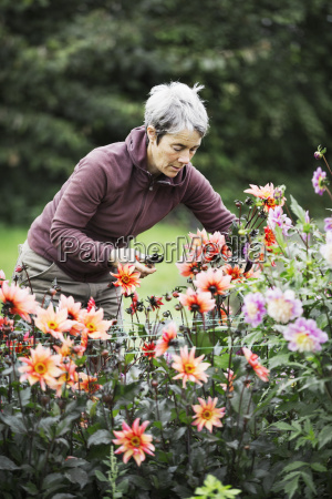 a woman cutting flowers in an