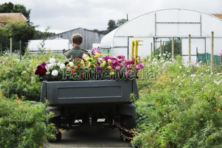 a man driving a small garden