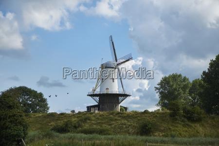 niederlande zeeland verre windmuehle