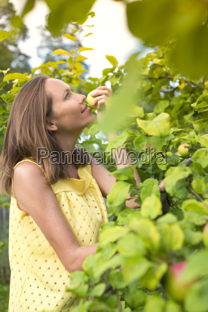 woman smelling apple in the garden