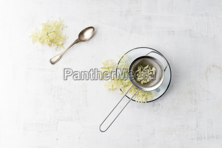 cup of elderflower tea
