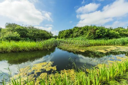 holland zeeland walcheren nature reserve near