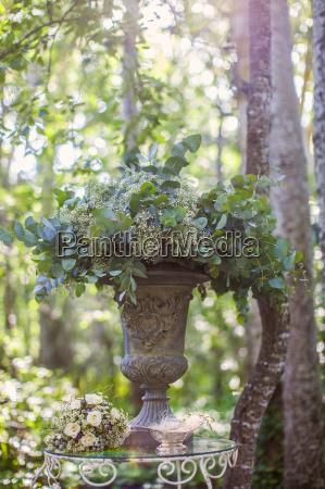 blume pflanze gewaechs romantisch hochzeit heirat
