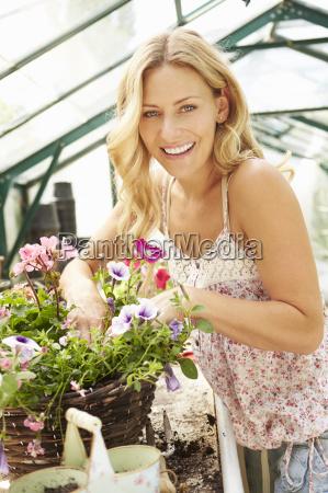 frau wachsende pflanzen im gewaechshaus