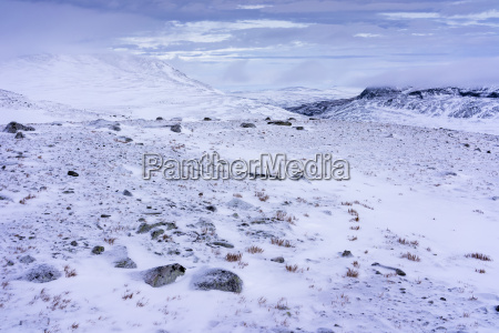 a snowy arctic winter landscape at