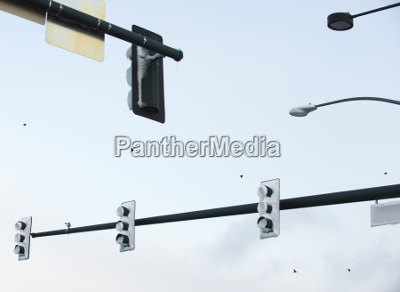 traffic signals and streetlights covered in