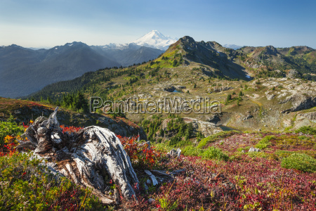 autum bei tomyhoi meadows im north