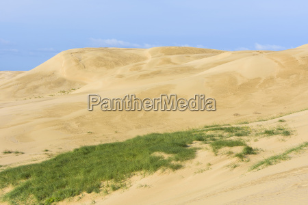 sand dunes rubjerg knude lokken north