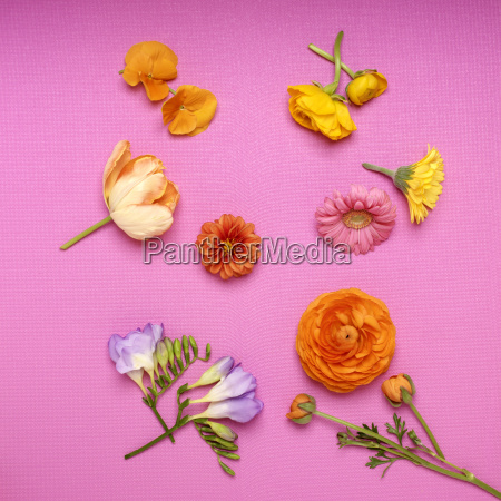 variety of cut flowers on bright