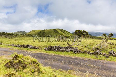 pastureland in front of volcano hill