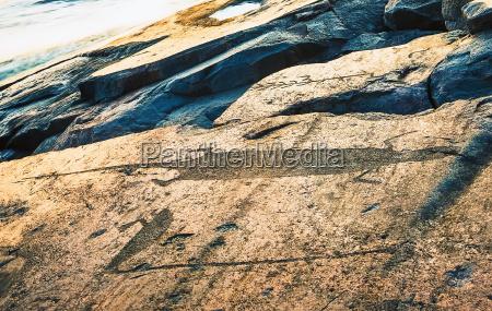 schwan felsen fels gestein otter vorgeschichtlich