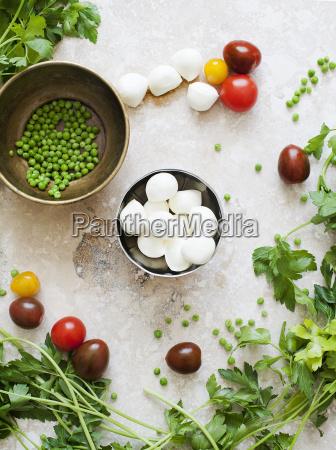 still life of bowls of mozzarella