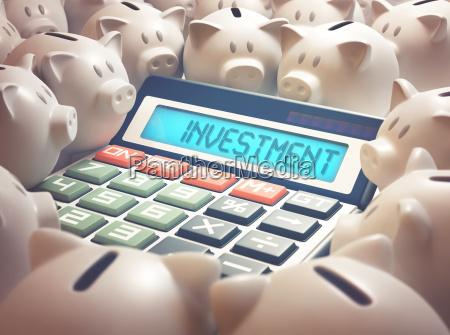piggy bank investment calculator
