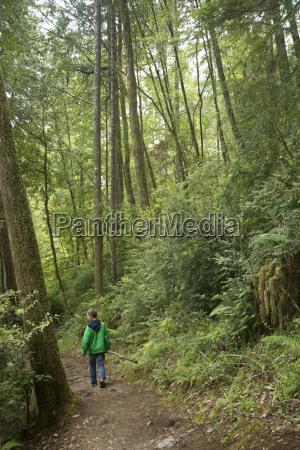 boy walking on path redwoods national