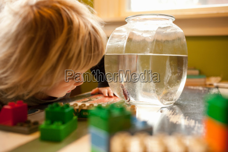 young boy looking in goldfish bowl