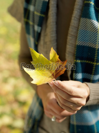 womans hand holding autumn leaf