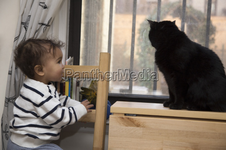 portrait of female toddler watching cat