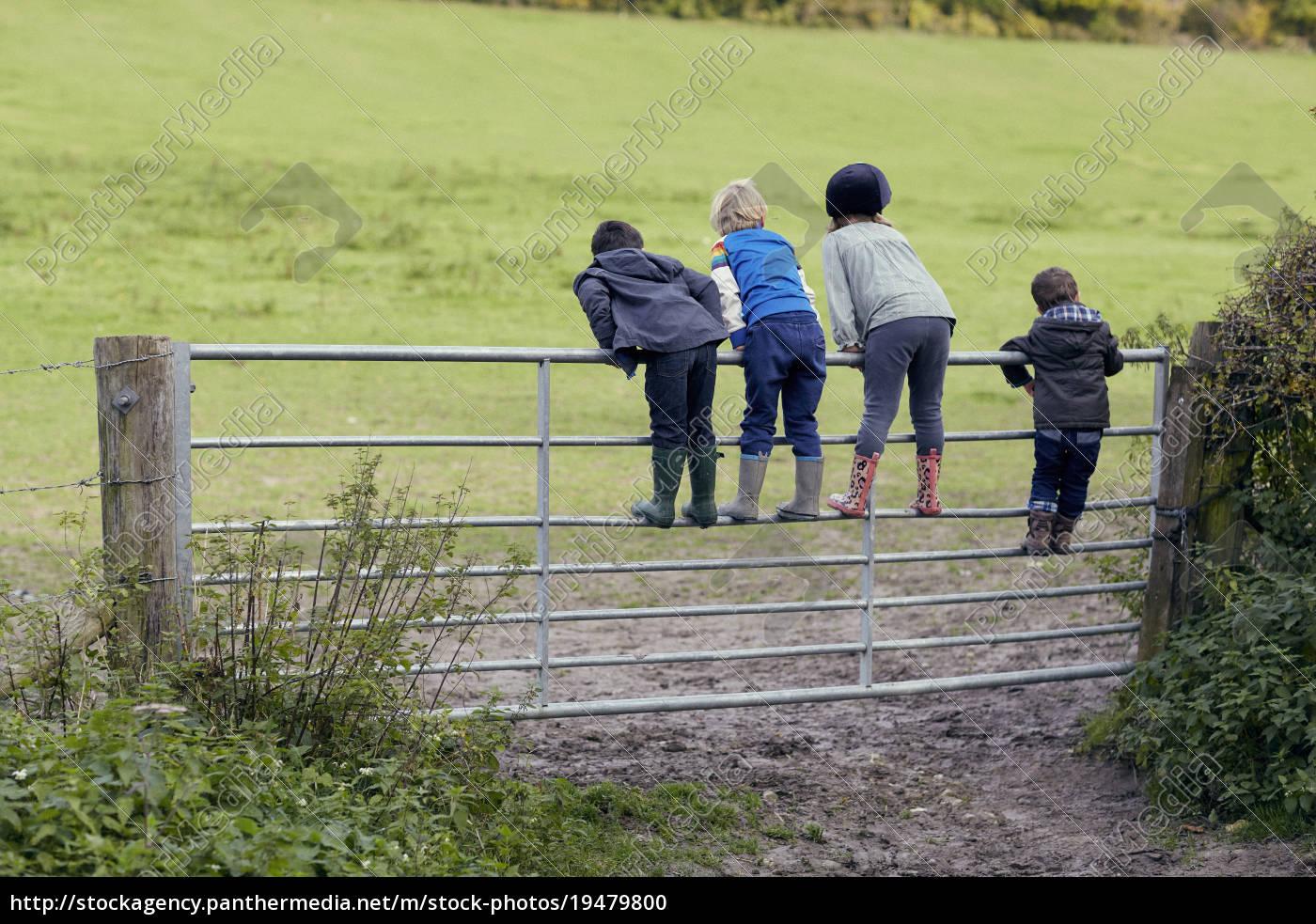 rückansicht, von, vier, kleinen, kindern, die, auf - 19479800