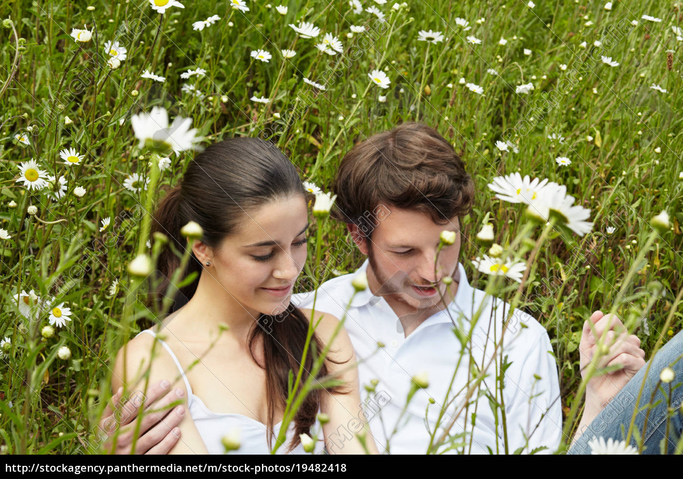 couple, relaxing, in, field, of, flowers - 19482418