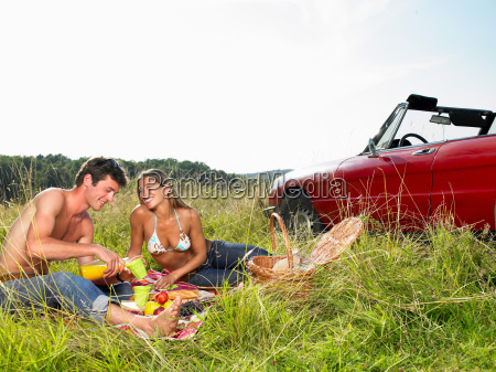 couple, having, a, picnic, in, a - 19506928
