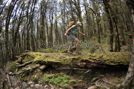 woman hiking in forest on log