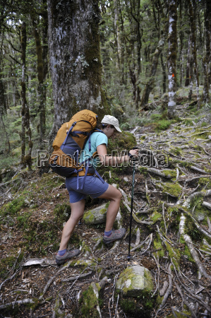 woman hiking in forest new zealand