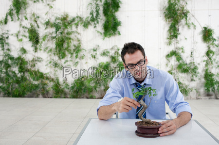 portrait of a business man at