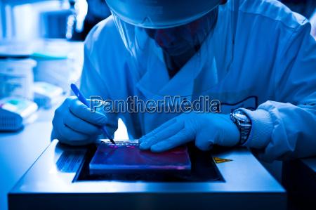 scientist using scalpel in lab