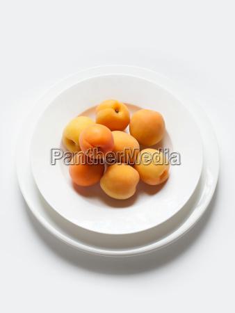 stillleben mit aprikosenschale