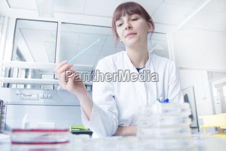 scientist testing strip in lab