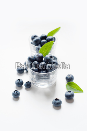 still life with blueberries in glass