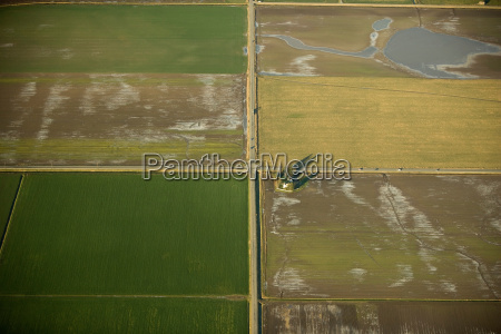 farmlands in skagit valley washington