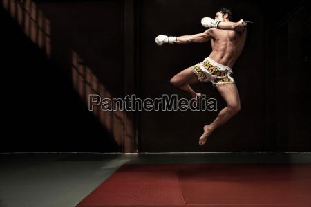 boxer springt auf matte