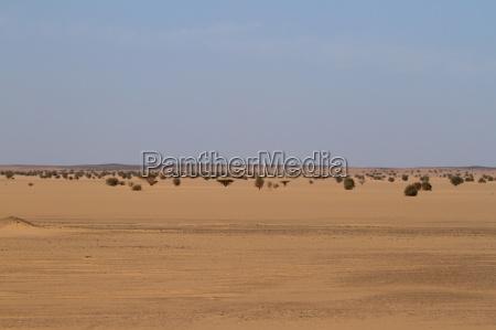 die wueste sahara im sudan in