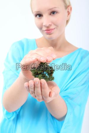 respektieren sie die gruene i die