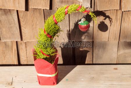 feiern feiernd feiert verzierung ornament weihnachtsbaum